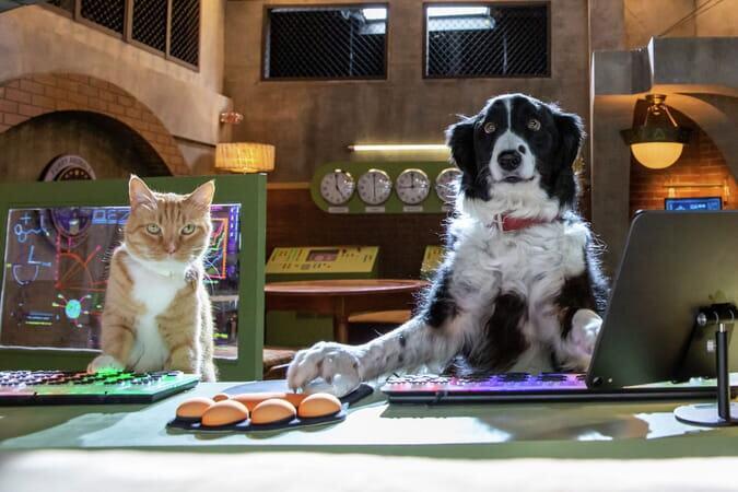 Cats and Dogs 3: Paws Unite! (U) – Half Term Family Cinema